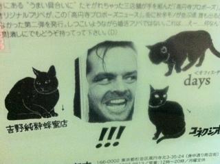猫と.JPG